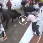 enraged-bull-jumps-directly-into-crowded-area