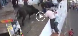 Enraged Bull Jumps Directly into Crowded Area
