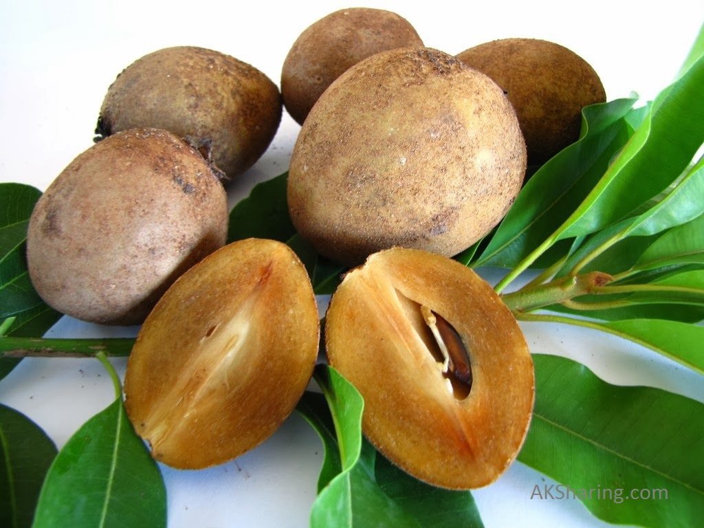 15 Amazing Benefits and Makes Use of Associated With Sapodilla Chikoo