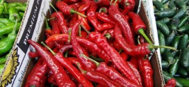 Do you Now? Amazing Benefits of Red Chilli