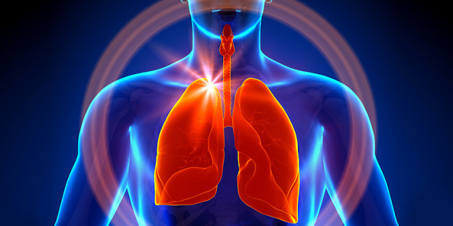 The Lungs Also Produce  Blood, New Discovery